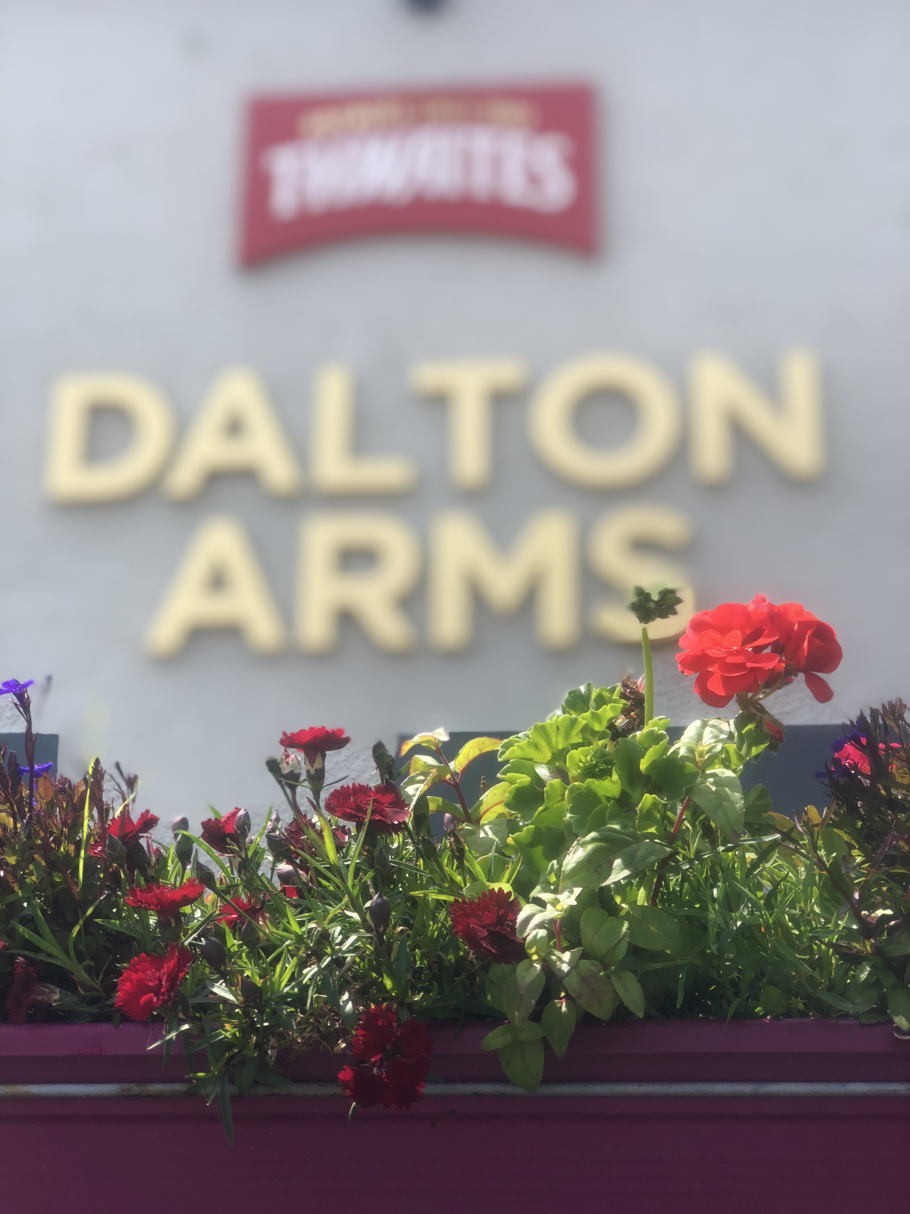 Dalton Arms in Bloom!